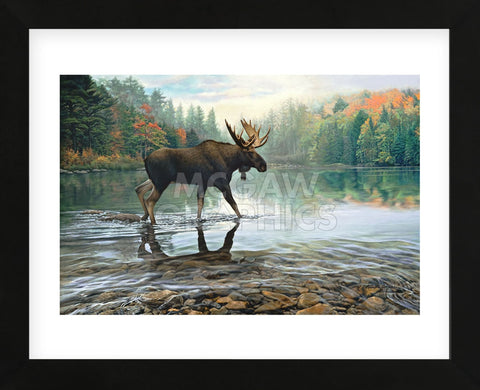 Moose Crossing (Framed) -  Russell Cobane - McGaw Graphics