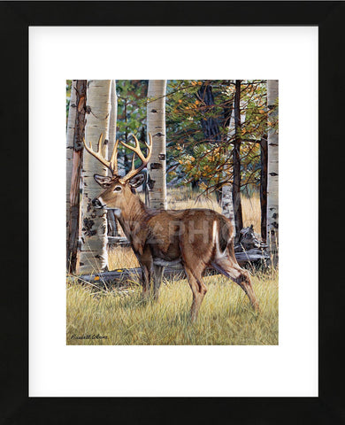 Russell Cobane - Fall Whitetail