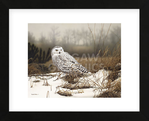 Snowy Mist (Framed) -  Russell Cobane - McGaw Graphics