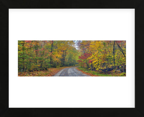 Autumn Road (Framed) -  Doug Cavanah - McGaw Graphics