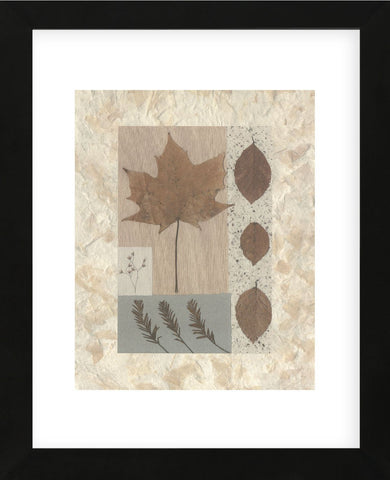 Copper Beech  (Framed) -  Denise Duplock - McGaw Graphics