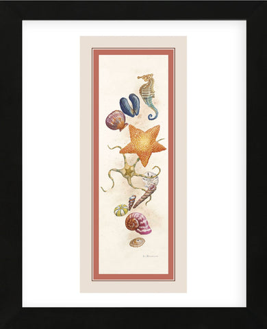 Seashore Discovery  (Framed) -  Lisa Danielle - McGaw Graphics