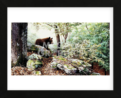 Along the North Ridge  (Framed) -  Linda Daniels - McGaw Graphics