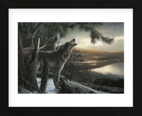 Wild Ones (Framed) -  Kevin Daniel - McGaw Graphics