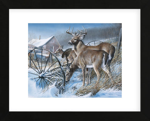 Snow Drifters (Framed) -  Kevin Daniel - McGaw Graphics