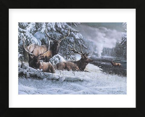 Late Winter Gathering (Framed) -  Kevin Daniel - McGaw Graphics