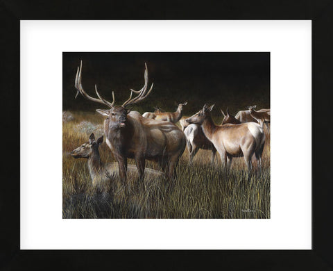 The Gathering (Framed) -  Kevin Daniel - McGaw Graphics