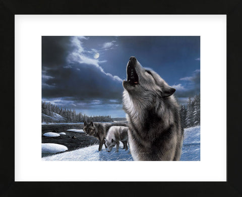 Howling Wolf (Framed) -  Kevin Daniel - McGaw Graphics