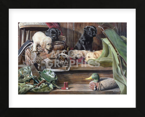 Dog Tired 2 (Framed) -  Kevin Daniel - McGaw Graphics