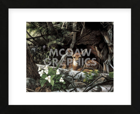Undercover II (Framed) -  Kevin Daniel - McGaw Graphics