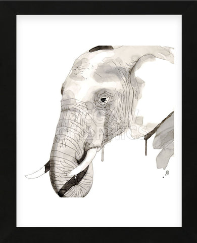 Elephant (Framed) -  Philippe Debongnie - McGaw Graphics