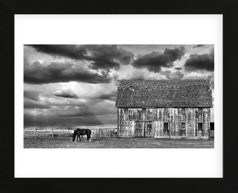 Horse and Barn (Framed) -  Trent Foltz - McGaw Graphics