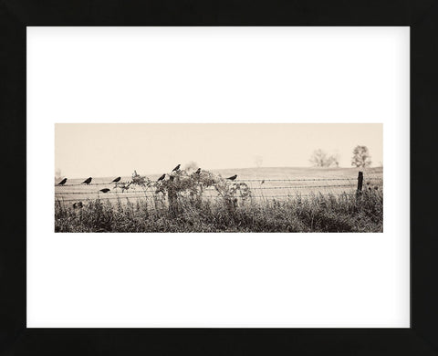 Resting Place I (Framed) -  Trent Foltz - McGaw Graphics