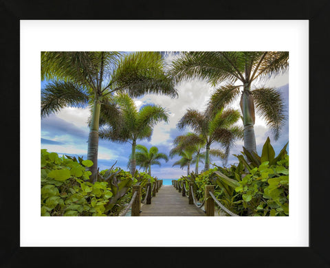 Paradise Path (Framed) -  Dennis Frates - McGaw Graphics