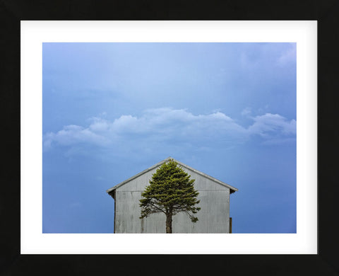 Green and Blue (Framed) -  Trent Foltz - McGaw Graphics