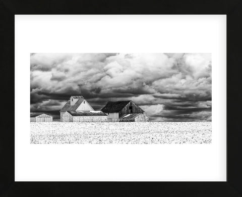 Trent Foltz - Five White Barns