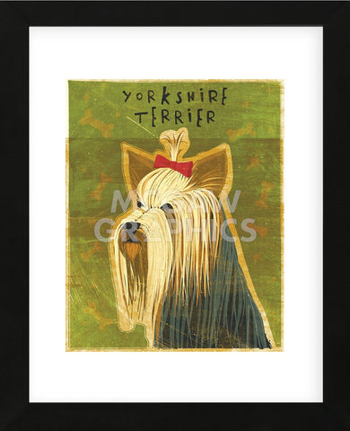 John W. Golden - Yorkshire Terrier