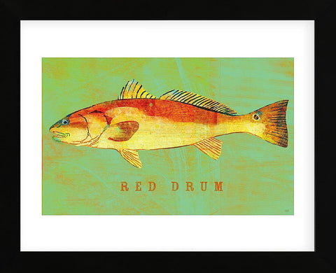 Red Drum  (Framed) -  John W. Golden - McGaw Graphics