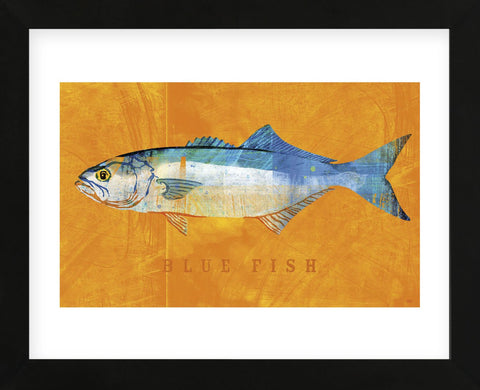Bluefish  (Framed) -  John W. Golden - McGaw Graphics