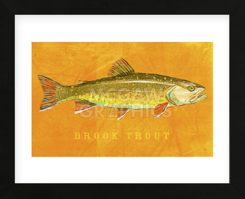 Brook Trout (Framed) -  John W. Golden - McGaw Graphics