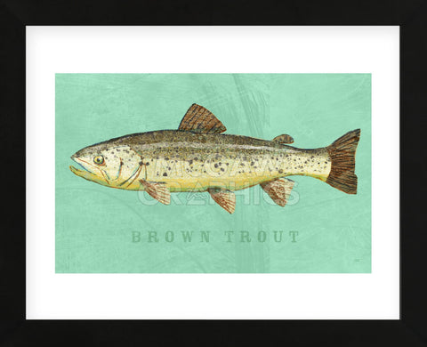 Brown Trout (Framed) -  John W. Golden - McGaw Graphics