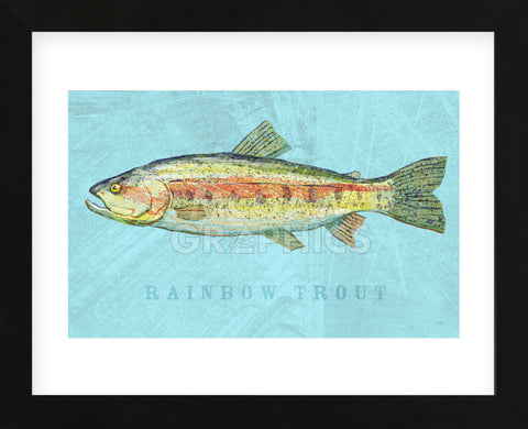 Rainbow Trout (Framed) -  John W. Golden - McGaw Graphics