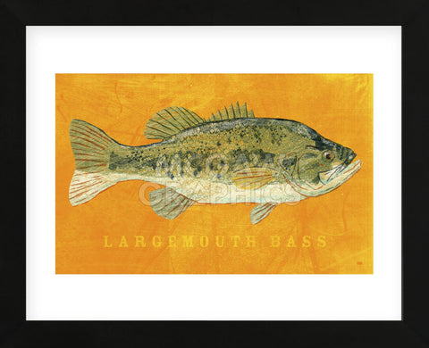Largemouth Bass (Framed) -  John W. Golden - McGaw Graphics