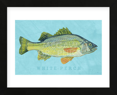 White Perch (Framed) -  John W. Golden - McGaw Graphics