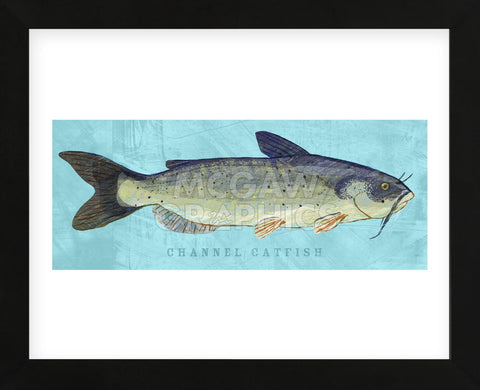 Channel Catfish (Framed) -  John W. Golden - McGaw Graphics