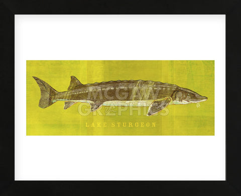 Lake Sturgeon (Framed) -  John W. Golden - McGaw Graphics