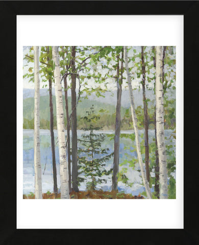 Cooper Lake I (Framed) -  Elissa Gore - McGaw Graphics