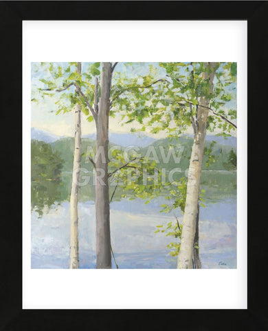 Cooper Lake II (Framed) -  Elissa Gore - McGaw Graphics