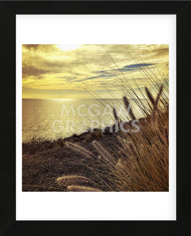 Oceanscape PCH (Framed) -  Gizara - McGaw Graphics
