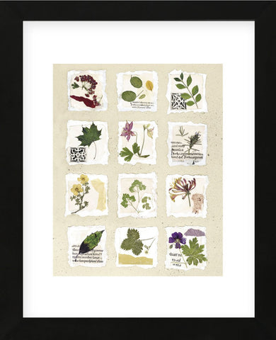 Kent Garden Fragments  (Framed) -  Annabel Hewitt - McGaw Graphics