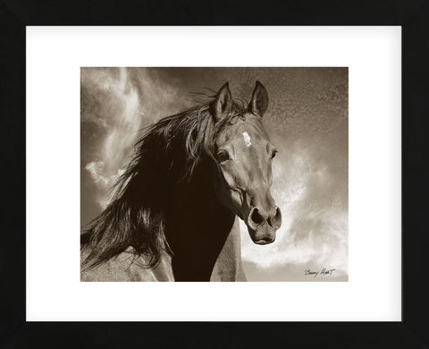 Wild as the Wind (Framed) -  Barry Hart - McGaw Graphics