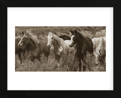 Pasture Pals (Framed) -  Barry Hart - McGaw Graphics