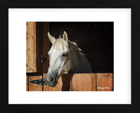 They Call Him Trouble (color) (Framed) -  Barry Hart - McGaw Graphics