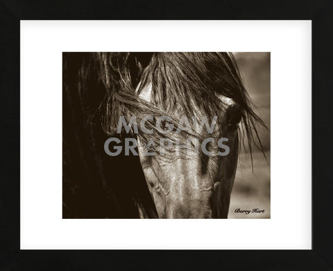 Tres Chic (Framed) -  Barry Hart - McGaw Graphics