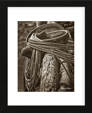 Sombrero Saddle (Framed) -  Barry Hart - McGaw Graphics