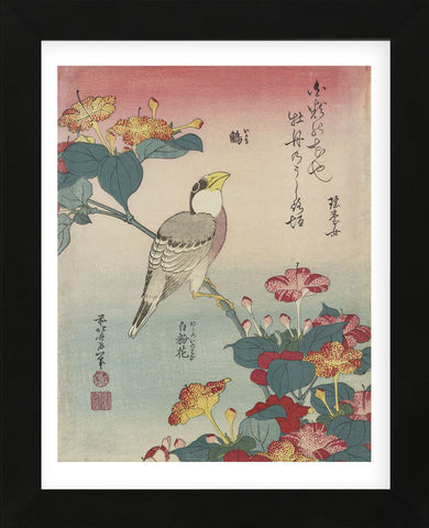 Hawfinch and Marvel-of-Peru (Framed) -  Katsushika Hokusai - McGaw Graphics