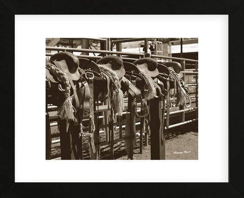 Bronc Saddles (Framed) -  Barry Hart - McGaw Graphics
