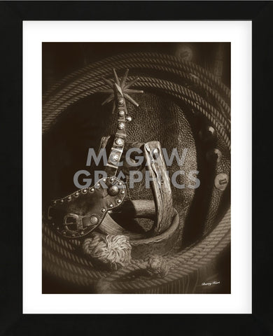 Oxbows and Yuma Spur (Framed) -  Barry Hart - McGaw Graphics