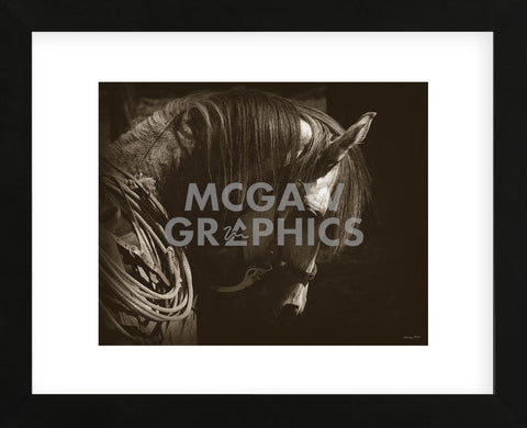 Gypsy (Framed) -  Barry Hart - McGaw Graphics