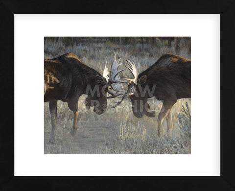 Moose Challenge (Framed) -  Terry Isaac - McGaw Graphics