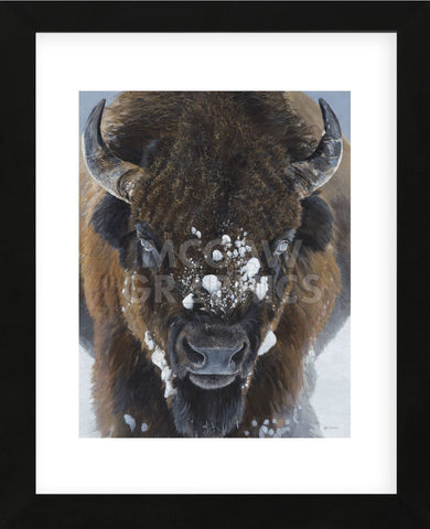 Winter Warrior (Framed) -  Terry Isaac - McGaw Graphics