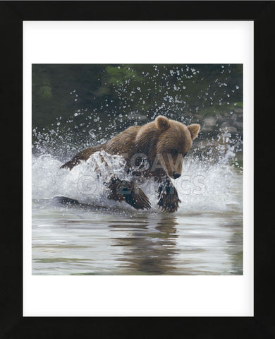 Making a Splash (Framed) -  Terry Isaac - McGaw Graphics