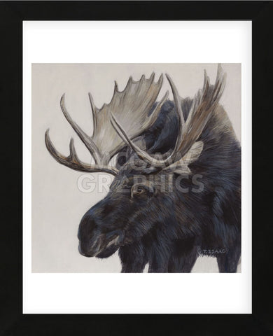 Wayward Moose (Framed) -  Terry Isaac - McGaw Graphics