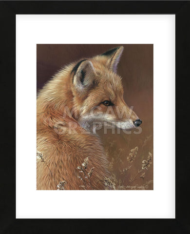 Curious - Red Fox  (Framed) -  Joni Johnson-Godsy - McGaw Graphics