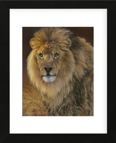 Power and Presence - African Lion  (Framed) -  Joni Johnson-Godsy - McGaw Graphics