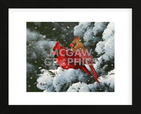 Winter Harmony (Framed) -  Mark Kelso - McGaw Graphics